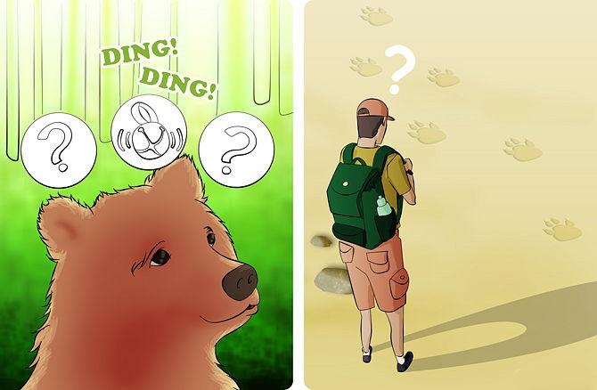 Фото. Не сталкивайтесь с медведем