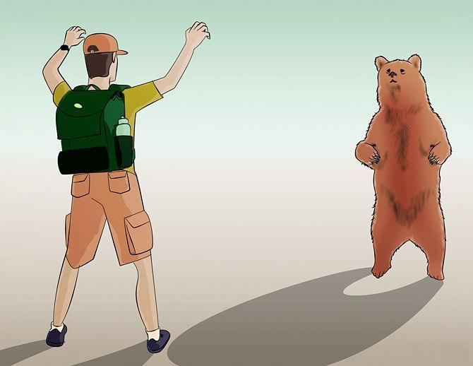 Фото. Станьте перед медведем