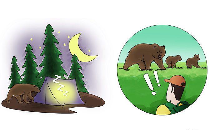 Фото. Медведи могут преследовать вас