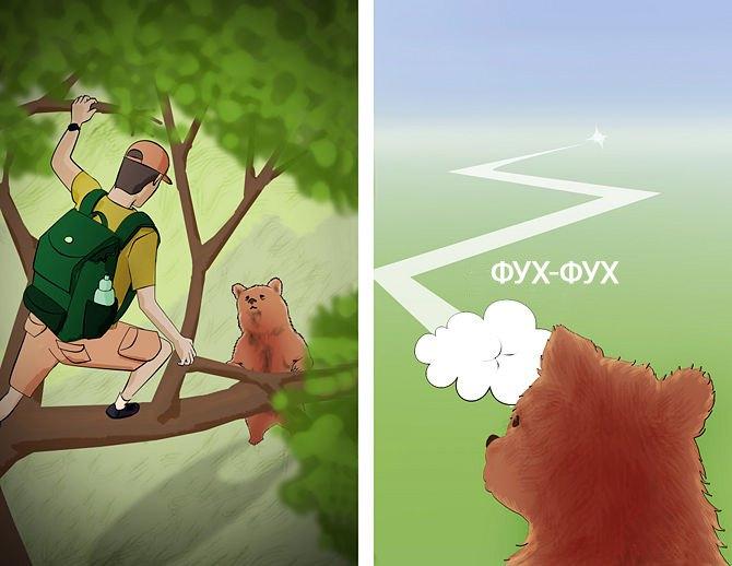 Фото. Убежите от медведя