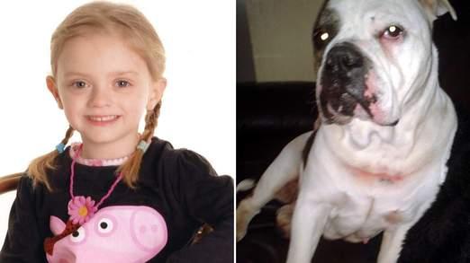Девочка загрызена собакой