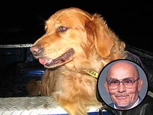 Собака не отходила от умершего хозяина
