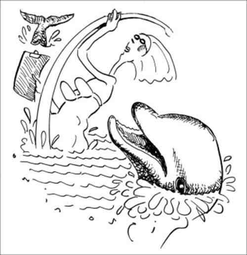 карикатура на дельфин
