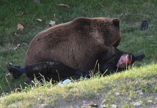 парень не стал сопротивлятся медведю