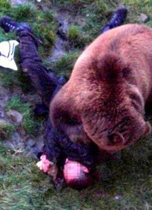 зубы медведя впились в тело мужчины