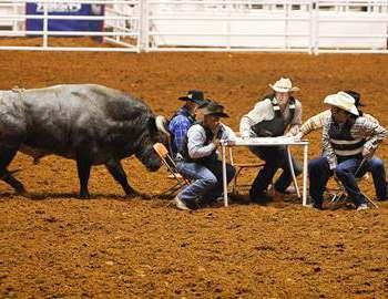 неудачная бычья рулетка