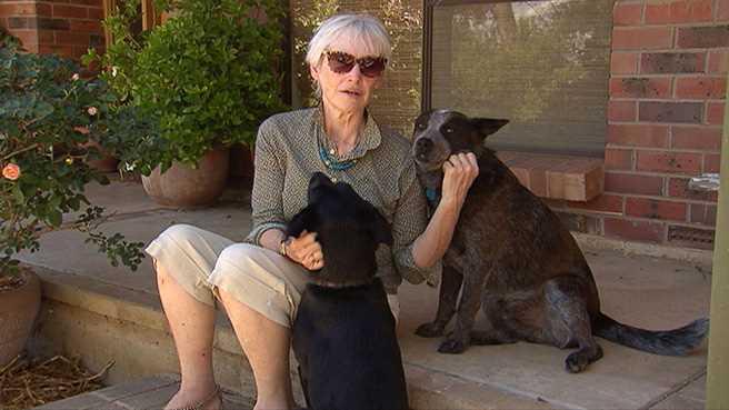 Женщина в объятиях своих собак
