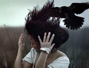 ворона лелит в голову человека