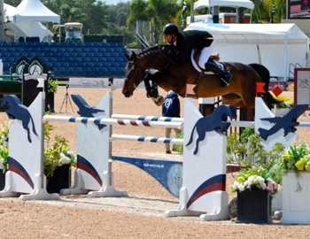 лошадь перепрыгивает через барьер