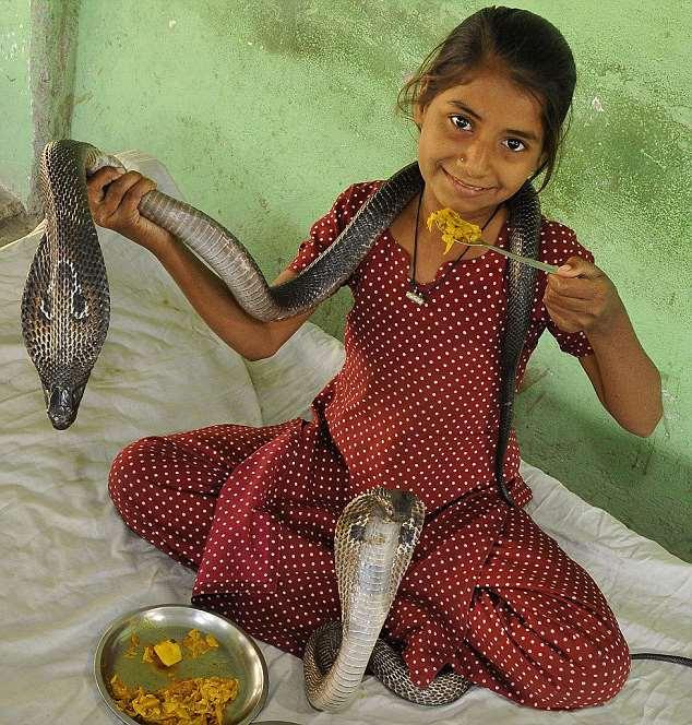 девушка и две голодные кобры