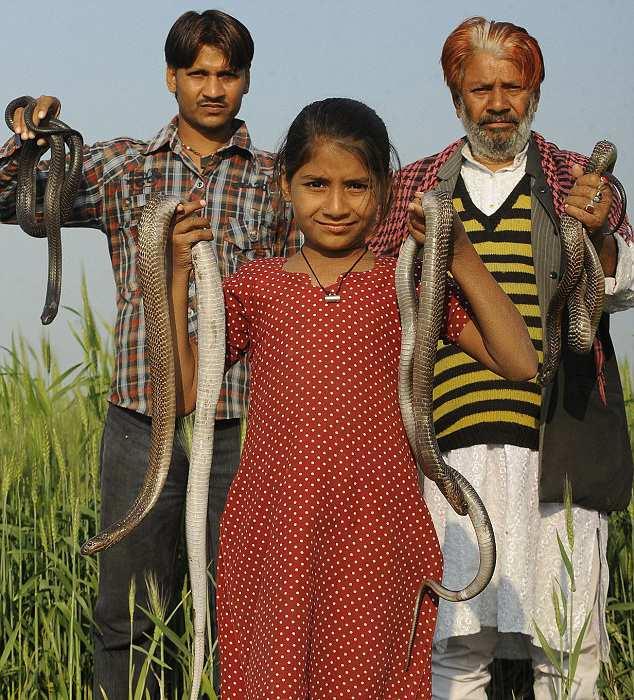 индиские змееловы