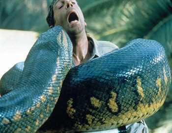змея проглатывает человека