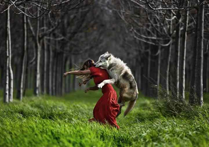 серый волк и шапочка