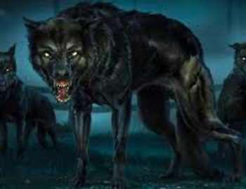стая злых собак