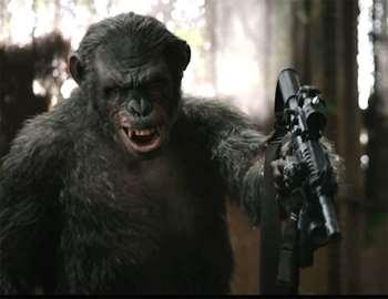 обезьяна с автоматом