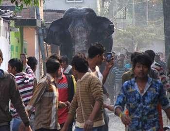 люди бегут от слона
