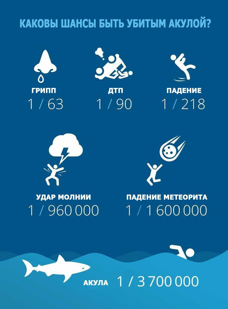 насколько опасны акулы