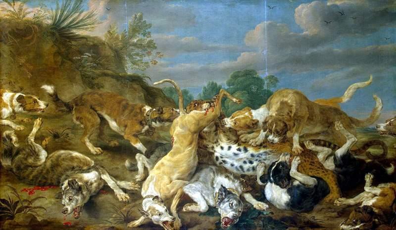собаки напали на леопарда