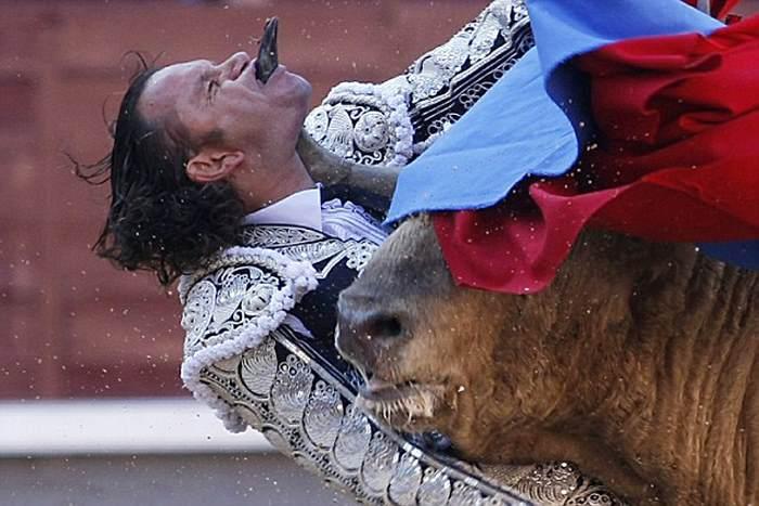 бык пробил горло матадора