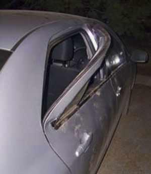 медведь взломал дверь автомобиля