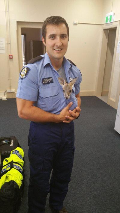 офицер с кенгуру