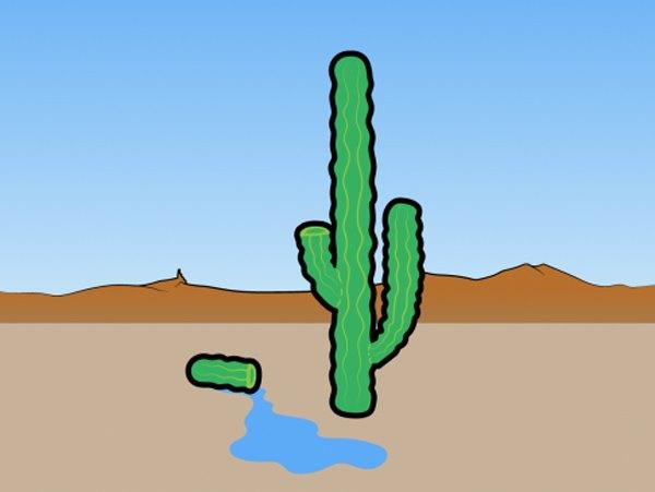 миф о кактусовой жидкости