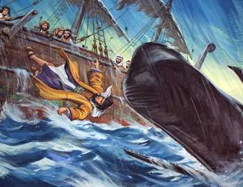 кит и корабль