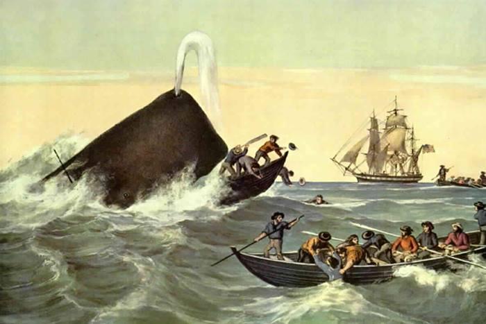 кит глотает людей