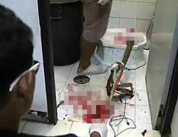 поле нападения питона в туалете