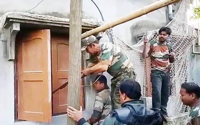 отлов леопарда в Индии