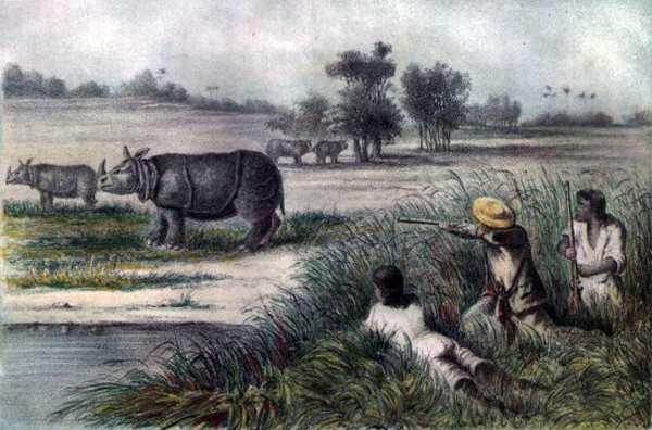 охотники и носорог