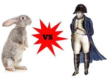 Наполеон против кроликов