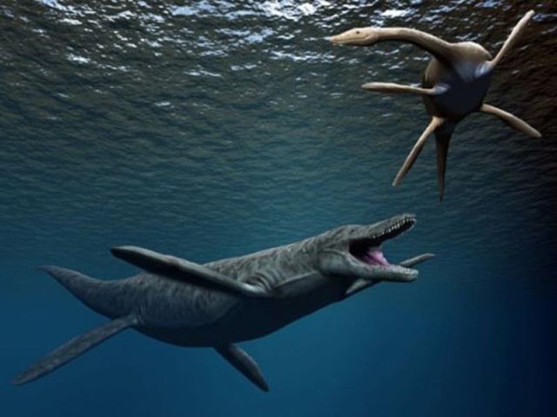 плывет кронозавр