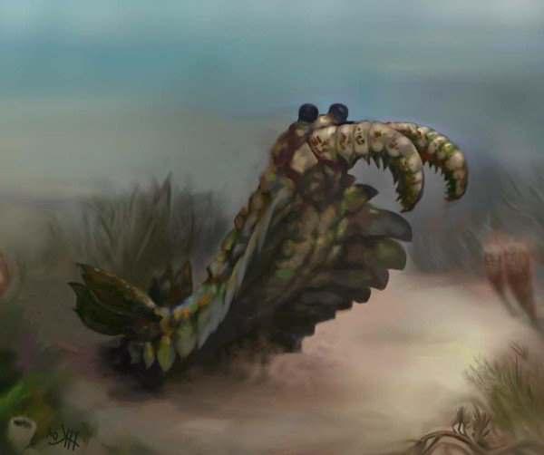 огромная креветка