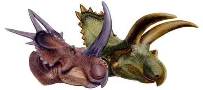 Рубеозавр