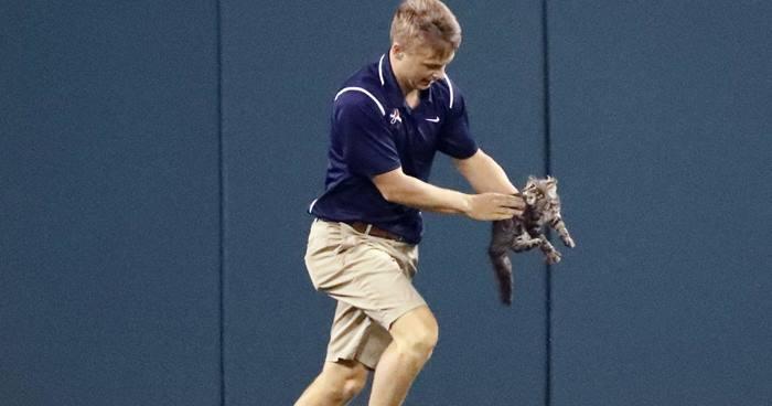 бейсболист бежит с котенком