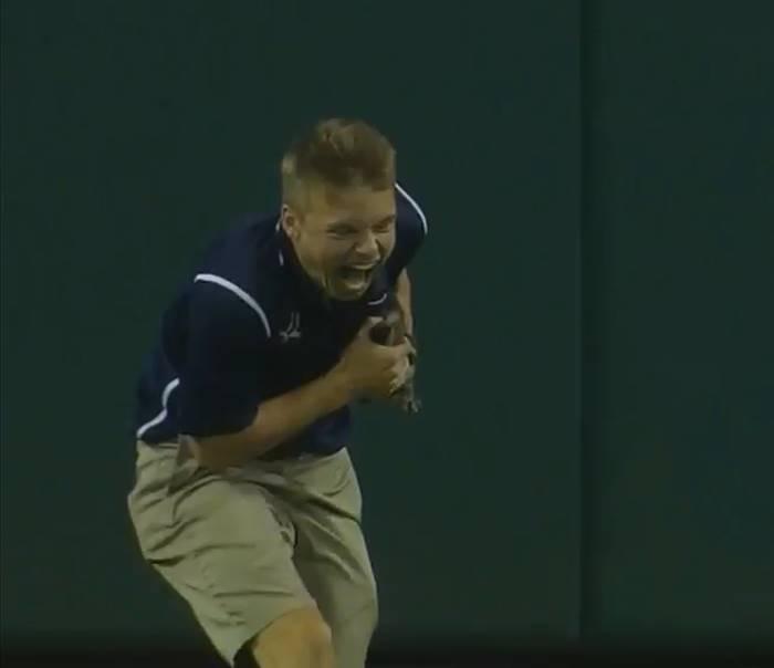 котенок укусил бейсболиста