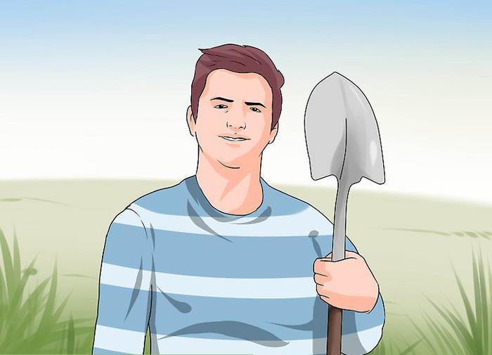 лопата от петуха