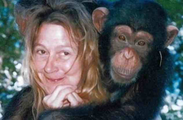 обезьяна изуродовавшая женщину