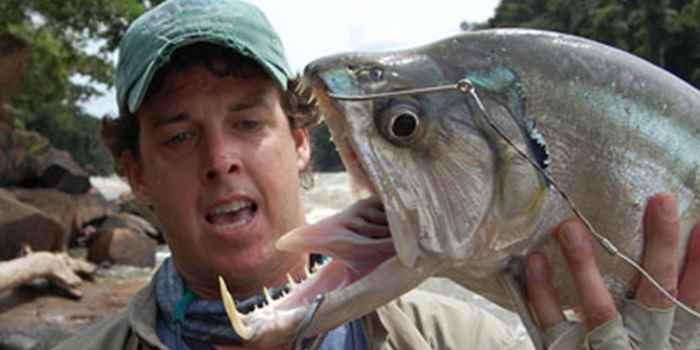 рыба-вампир