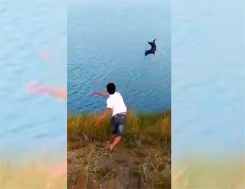 парень бросил щенка крокодилу