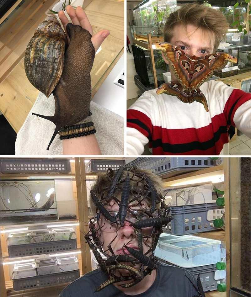 мужчина с насекомыми на лице