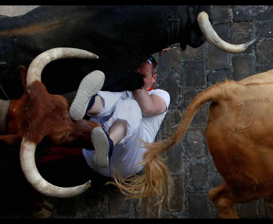 быки бегут через мужчину
