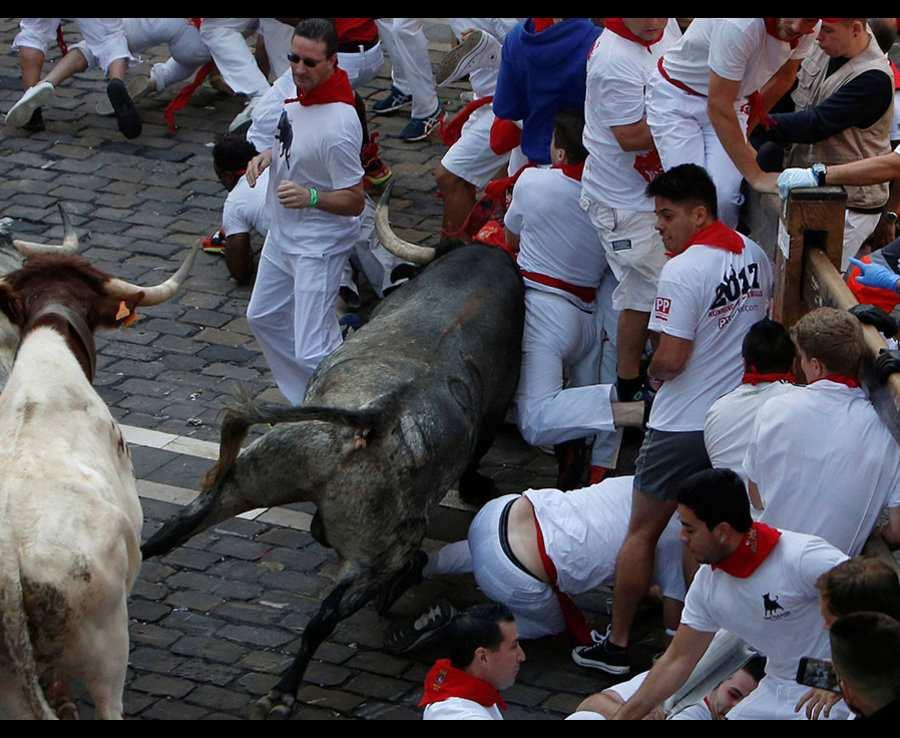 бык протаранил людей