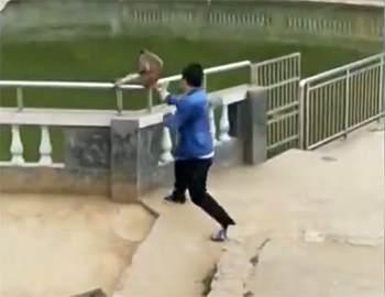 парень толкнул обезьяну