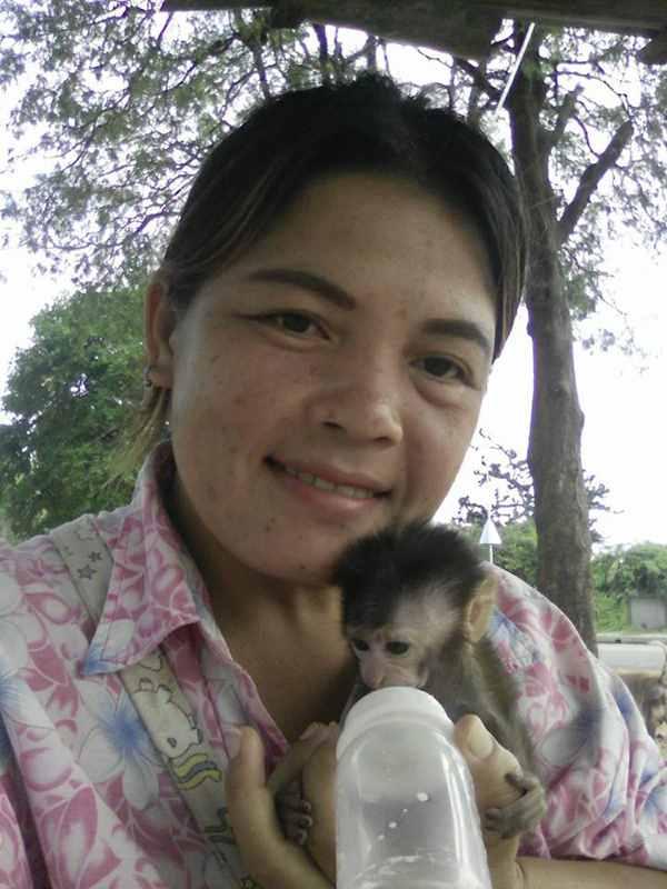 женщина спасла обезьяну