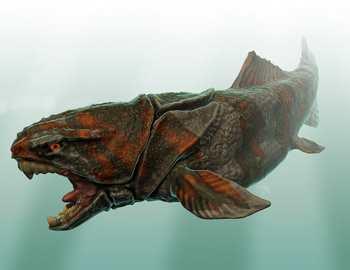 рыба Дунклеостей