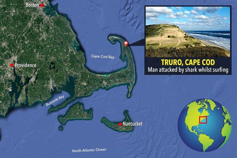 место где акула напала на американца