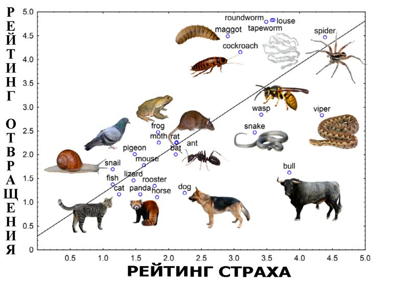 шкала страхов животных