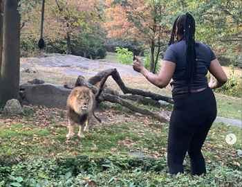 женщина спрыгнула к льву